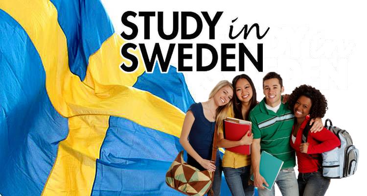 تحصیل لیسانس در سوئد